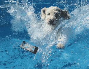 telefon upao u vodu